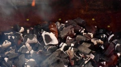 Charcoal fire Stock Footage
