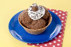 chocolate flavor ice cream - stock photo