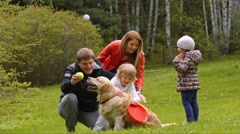 Family of four playing with a dog on a green lawn - stock footage