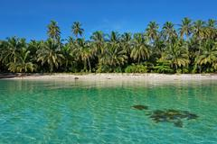 untouched tropical shore of an island in panama - stock photo