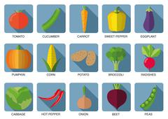 vegetable icon set. the image of vegetables symbol - stock illustration