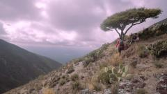 Friends hiking to reach high point Stock Footage