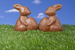 Two chocolate bunny candies lying on the grass Stock Photos