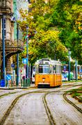 Old tram at the street of budapest Stock Photos