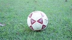 Soccer Ball on Green Grass - stock footage