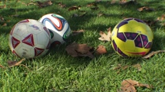 Soccer Balls in the Park Stock Footage