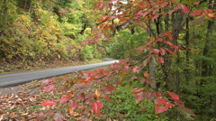 blue ridge parkway road in the fall, asheville, nc, usa - stock footage