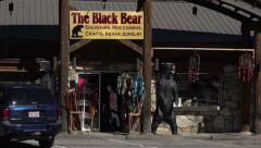 Black bear, native american craft shops, cherokee village, nc, usa Stock Footage