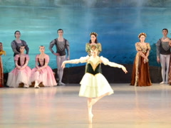 Ballet Swan lake. Related clips are in my portfolio in 1920x1080. Stock Footage