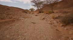Desert walk POV gimbal 4K Stock Footage