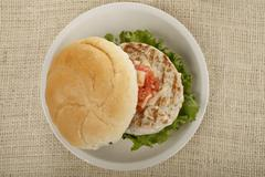 Plate of grilled chicken burger Stock Photos