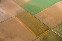 aerial of fields in golden sunset light - stock photo
