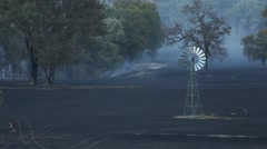 Bushfire Aftermath Stock Footage