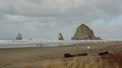 People Walking along Beach - Haystack Rock, Cannon Beach - stock footage