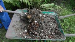 Common earthworms writhing in compost 5 Stock Footage