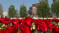 The biggest nuclear power plant in Europe with tulips. Stock Footage