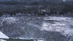 Aerial Pan Over Alaskan Snowy Riverbed Bare Trees in Winter Forest Stock Footage