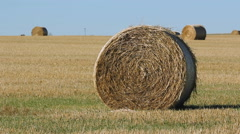 Hay bale in a field. Alberta, Canada. Stock Footage