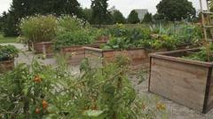 Urban Community Garden Stock Footage