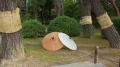 Japanese traditional paper umbrellas in Korakuen Garden Stock Footage