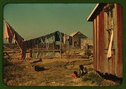 Backyard of Negro tenant's home, Marcella Plantation, Mileston, Miss. Delta Stock Photos