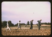 Chopping cotton on rented land near White Plains, Greene County, Ga. Stock Photos