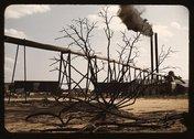 Sawmill at the Greensboro Lumber Co., Greensboro, Ga. Stock Photos