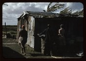 Negro migratory workers and one shack, Belle Glade, Fla. Stock Photos