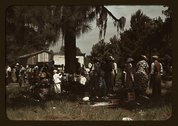 Fourth of July picnic by Negroes, St. Helena Island, S.C. Stock Photos