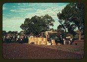 Distributing surplus commodities, St. Johns, Ariz. Stock Photos