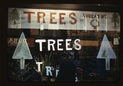 [Christmas trees and wreaths in store window display] Stock Photos