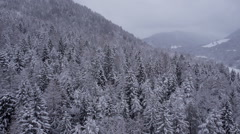 Aerial - Snow capped trees with a view at cloudy mountains in the background Stock Footage