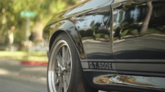 Shelby Footage Stock Footage