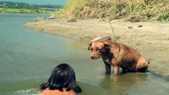 Dog and girl playing  in the water Stock Footage