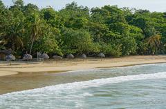 Palm leaf thatch umbrellas on a sandy beach Stock Photos