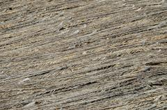 Texture of the classic thatch roof Stock Photos