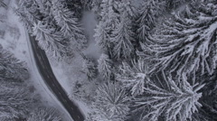 Aerial - Road next to the snow covered trees Stock Footage