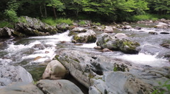 Little Pigeon River in the Great Smoky Mountains Stock Footage