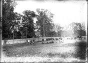 Goal line action at Miami-DePauw football game 1910 Stock Photos