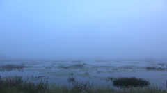 Time lapse Fog over swamp just before sunrise Stock Footage