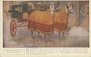 5A Horse Blankets Stock Photos