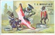 T.E. Moseley & Co. Stock Photos