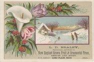 L. D. Braley (Nurseryman & Dealer) Stock Photos