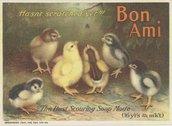 Bon Ami Company (Manufacturers) Stock Photos