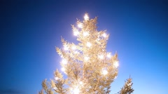 Christmas tree glowing brilliant lights against blue sky, Iceland Stock Footage