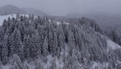 Aerial - Snow covered landscape Stock Footage