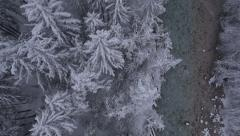 Aerial, vertical - River and snow covered trees at a light snowing Stock Footage
