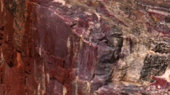 Petrified Forest National Park Stock Footage