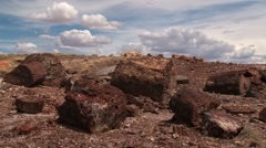 Petrified Forest National Park - stock footage