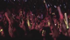 Crowd in Concert Night (slow) Stock Footage